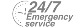 24/7 Emergency Service Pest Control in Wembley, Alperton, Sudbury, HA0. Call Now! 020 8166 9746